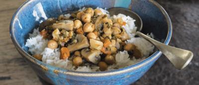 תבשיל פטריות, שורשים וגרגרי חומוס